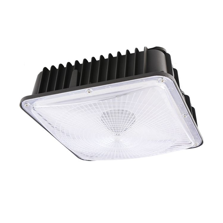 Picture of Canopy Light 50W